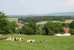 Haute sa ne chambres d 39 agriculture bourgogne franche comt - Chambre d agriculture franche comte ...